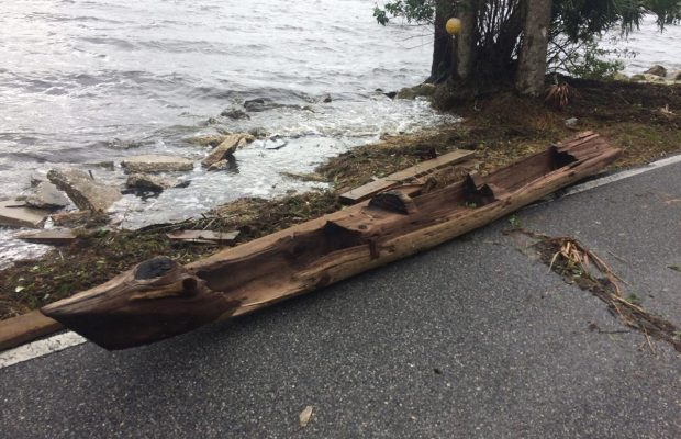 Hurricane Irma Washed Canoe Ashore