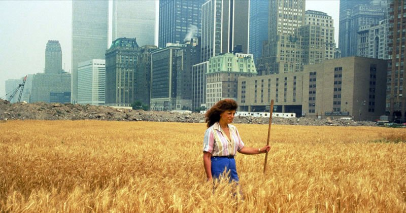 An Artist Harvested Two Acres of Wheat on Land Worth $4.5 Billion in 1982