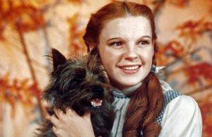 Wizard Of Oz (Judy Garland vs Dog)