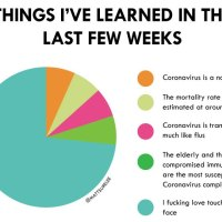 A Pie Chart of Things Learned In The Last Few Weeks About the Coronavirus