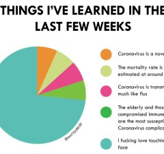 Coronavirus Pie Chart