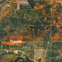 NASA Satellite Images Of Huge California Superbloom Seen From Space