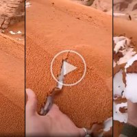 Snowstorm in Saudi Arabia Turns Desert Into A Dessert Bowl