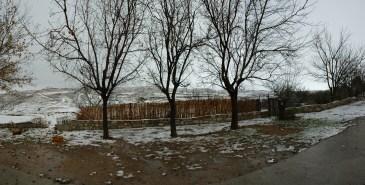 nieve panorama