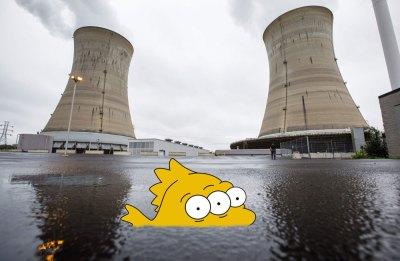 Three Mile Island Disaster Nuclear Three Eyed Fish Mutation