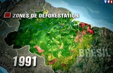 zone_deforestation_amazonie_1991