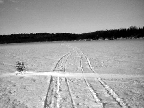 Snow mobiles, skiers, ATVs
