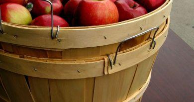Food Share Apple Bushel