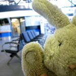 Who is this Travel Bunny?
