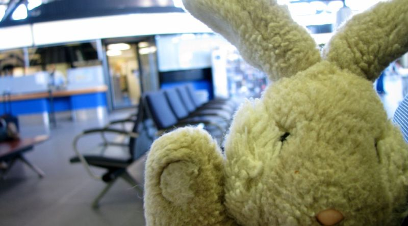 Travel Bunny enroute