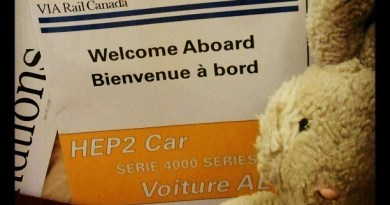 Instagramming Travel Bunny on Via Rail