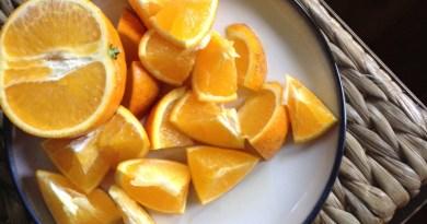 Florida Oranges in Florida