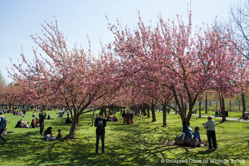 Urban tastebud by adam bryan 1 comment this article is sponsored by bloomsybox. 7 Nyc Botanical Gardens Brooklyn Nybg Bronx Queens Snug Harbor 6bc Narrows And Wave Hill Untapped New York