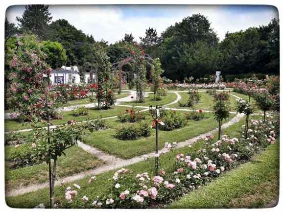 Der Lörracher Rosengarten ist Teil des Landschaftsparks Grütt