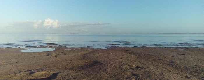 nordsee-morgens-bensersiel-1-min