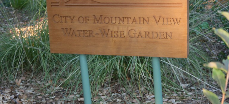 Mountain View's Water Wise Gardens