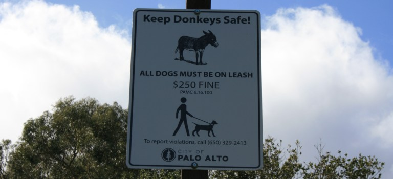 Keep Donkeys Safe sign