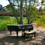 Piano at Vasona Lake
