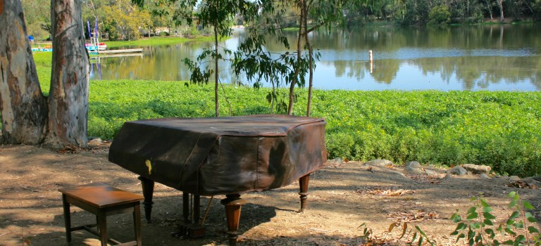 Play piano in the park