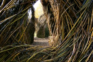 Patrick Dougherty's whiplash at the Palo Alto Art Center