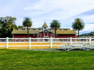 The Red Barn, part of the Stanford Equestrian
