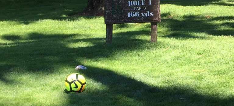 Play some foot golf