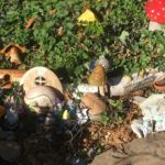 Fairy garden at San Mateo Arboretum Society