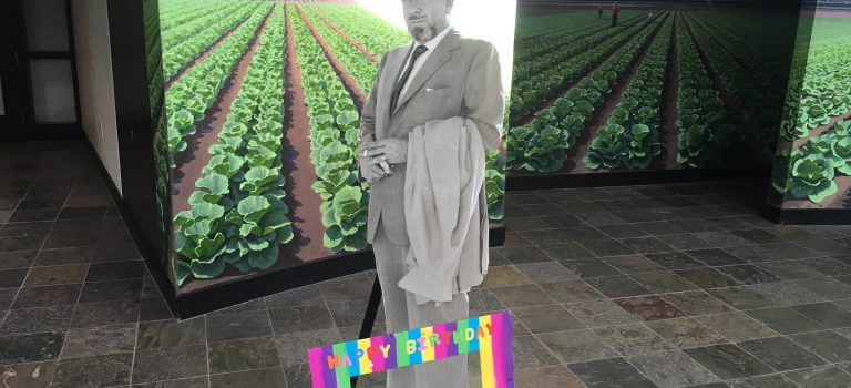 A prob of John Steinbeck in front of an image of a cabbage field, Steinbeck Center, Salinas