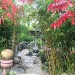 Koi pond at the Los Altos Nursery