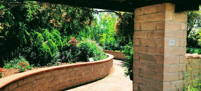 The entrance to the sensory garden.