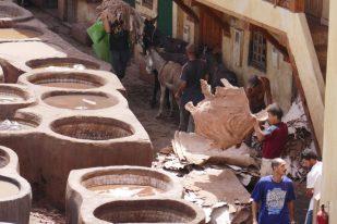 More donkey work