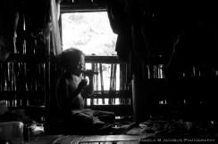 Murong Boy Sugar Cane