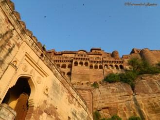 Jodhpur 7
