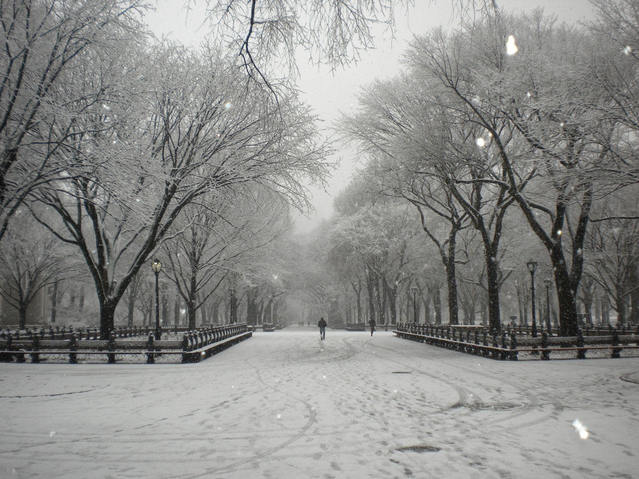 new-york-central-park-natale