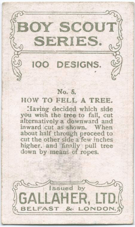 How-to-fell-tree2