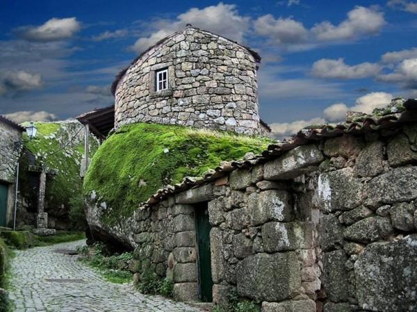 Image result for monsanto portugal