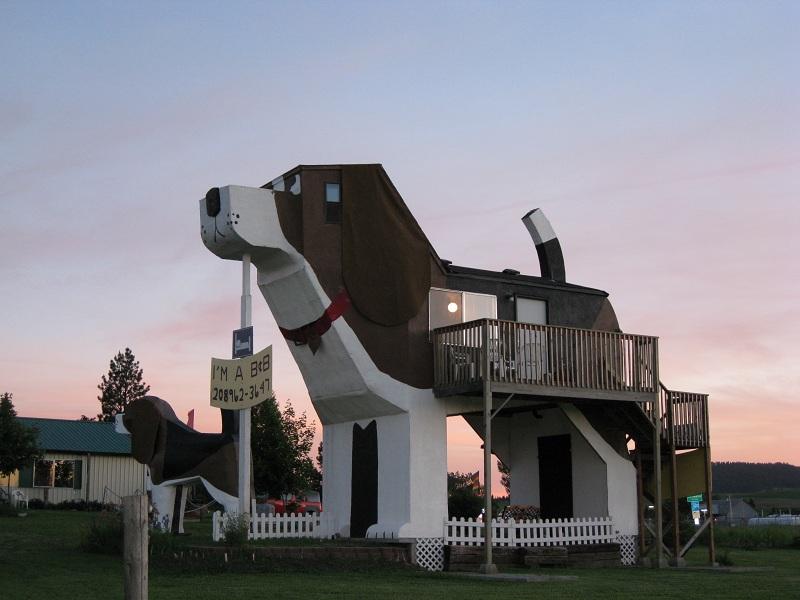 Toby and Sweet Willie Dog Bark Park Inn ile ilgili görsel sonucu