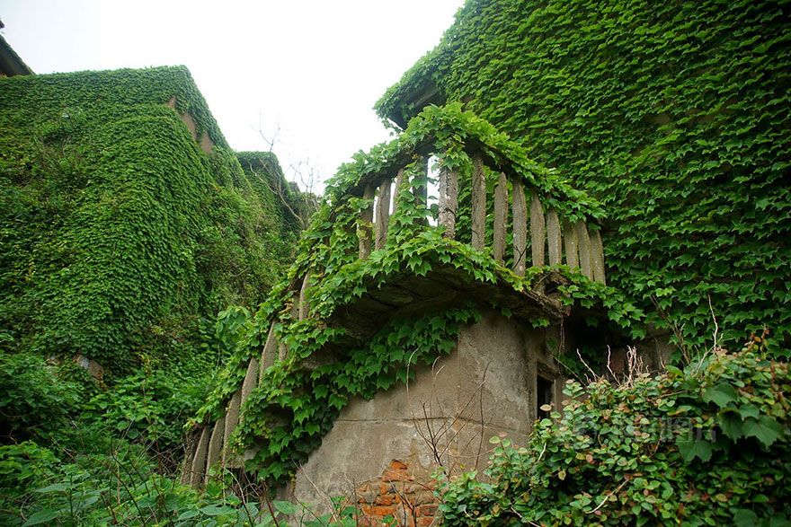 abandoned-village-zhoushan-china-8
