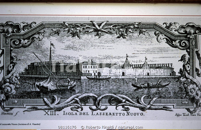Antique ink print of Lazzaretto Nuovo and its monastery