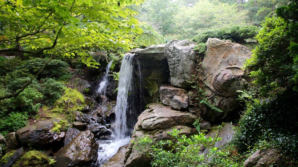 The Garvan Woodland Gardens is located in the picturesque Ouachita Mountains.