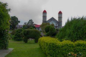 El contraste de las formas de ciprés con la iglesia