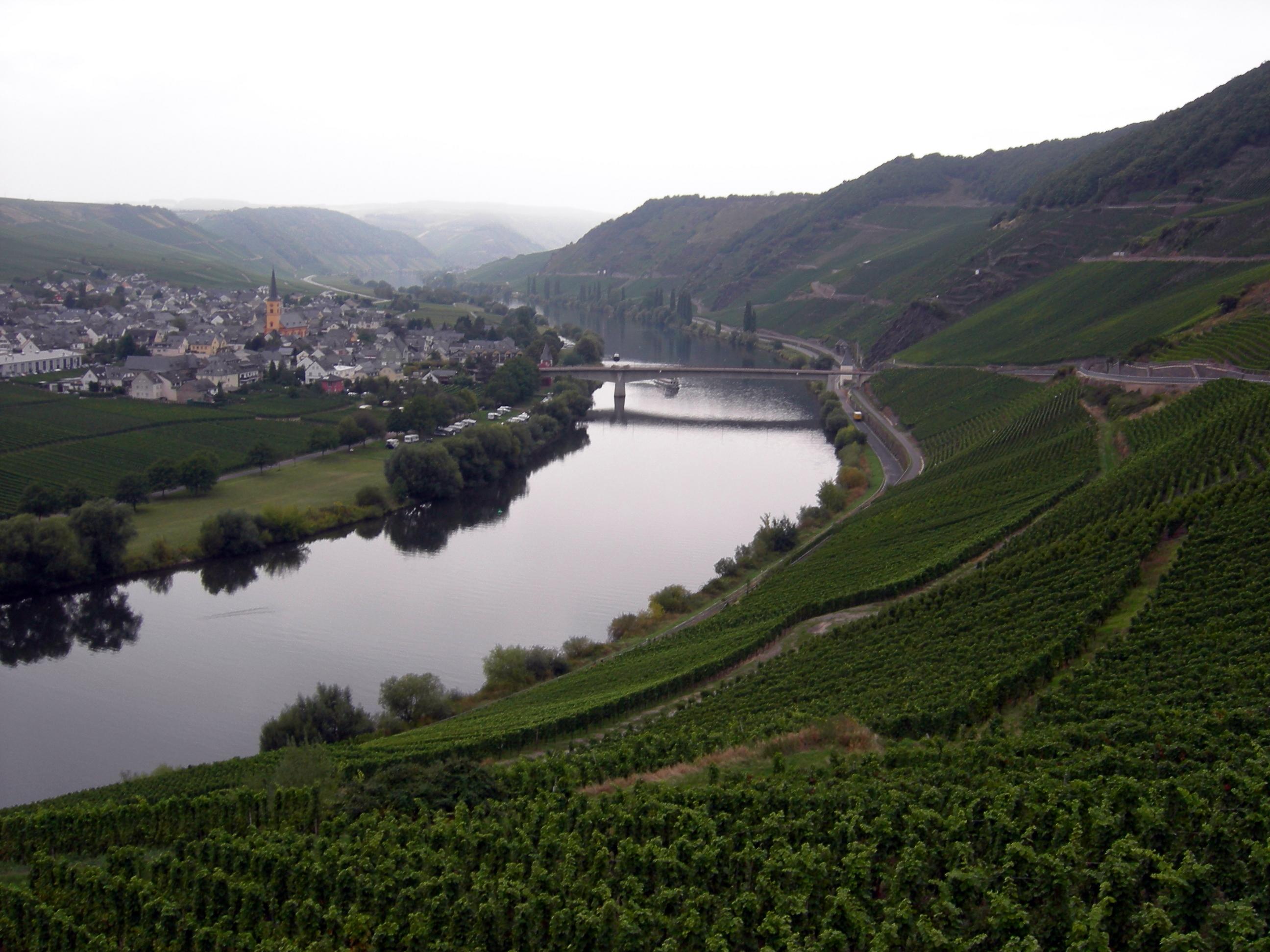 Mosel a su paso por Trittenheim