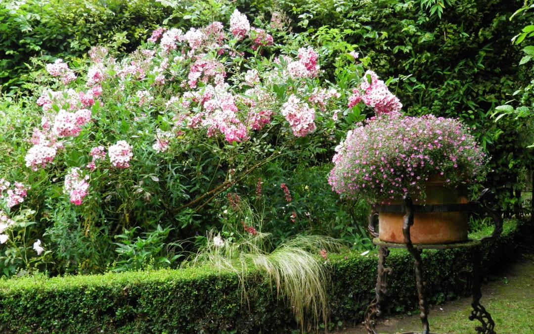 Un jardin extraordinaire à St-Céneri-le-Gérei