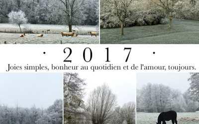 Bienvenue 2017 !