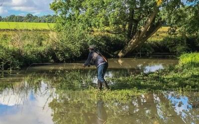 La pêche à la mouche au Moulin de Boizard