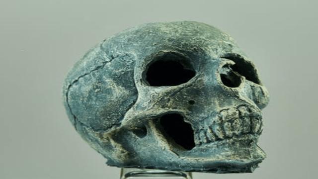 родезийский череп