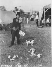 WPA Federal Theatre Circus. Charlie Fortuna, one of the 65 clowns with the circus. 69-TC-NYC-19-478-14.