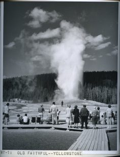 Old Faithful, Yellowstone. 377-C-WY-1
