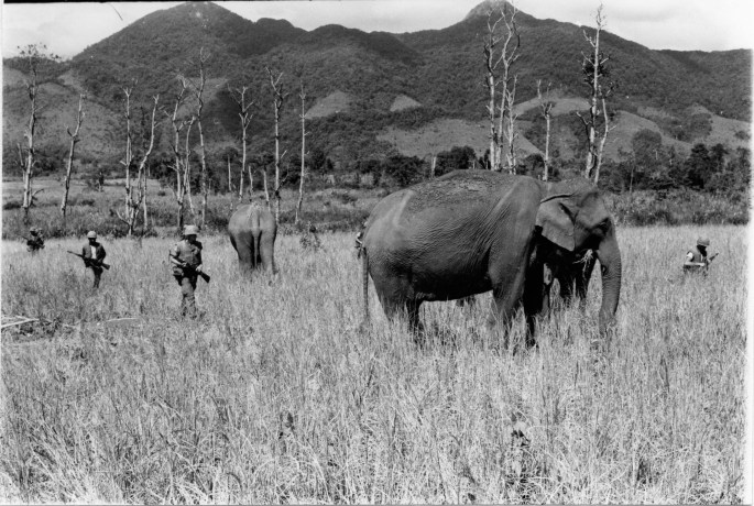 """14 October 1966. Marines of """"A"""" Company, 1st Battalion, 3rd Marines pass through an open field near some elephants belonging to the Monteguards people while on patrol around the Kho Sank air strip."""