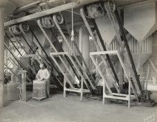 Wrigley Factory. Grinding sugar. Local Identifier: 165-WW-192D-12.